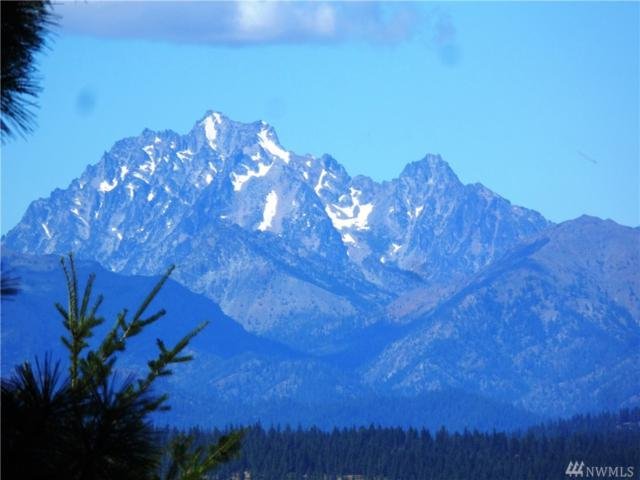 0-D Upper Peoh Point Rd, Cle Elum, WA 98922 (#1274548) :: Homes on the Sound