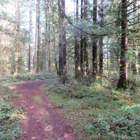1370 W Satsop Maple Glen Rd, Elma, WA 98541 (#1274588) :: Homes on the Sound