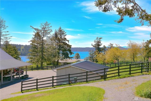 4076-B Crow Valley Rd, Orcas Island, WA 98245 (#1274780) :: Kimberly Gartland Group