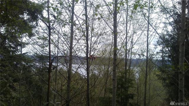 17 E Go Onna Tracts, Quilcene, WA 98376 (#1274852) :: Homes on the Sound