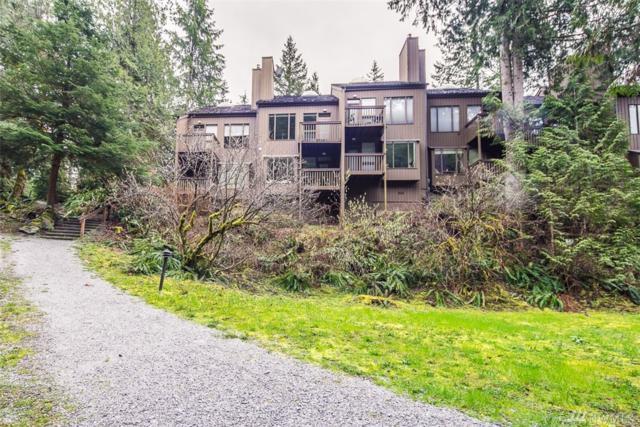 10500 Mt Baker Hwy #1011, Glacier, WA 98244 (#1274913) :: Morris Real Estate Group