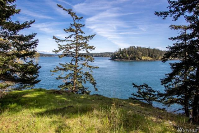 1700 Spring Point Rd, Orcas Island, WA 98243 (#1274939) :: Keller Williams Realty