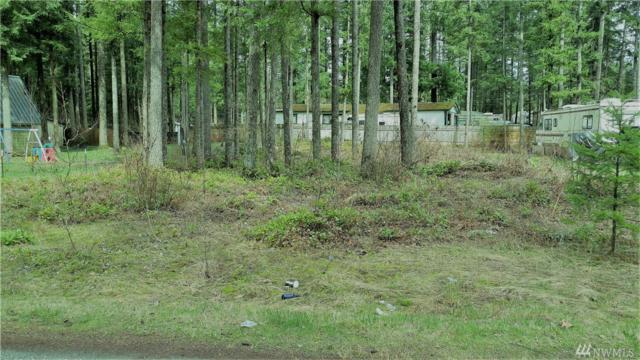 6190 Chestnut, Maple Falls, WA 98266 (#1274962) :: Carroll & Lions