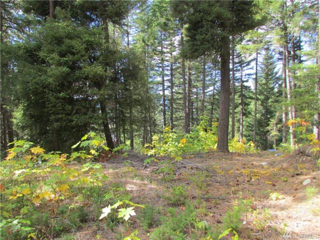 0-Lot 9 Sandstone Dr, Ronald, WA 98940 (#1275788) :: Homes on the Sound