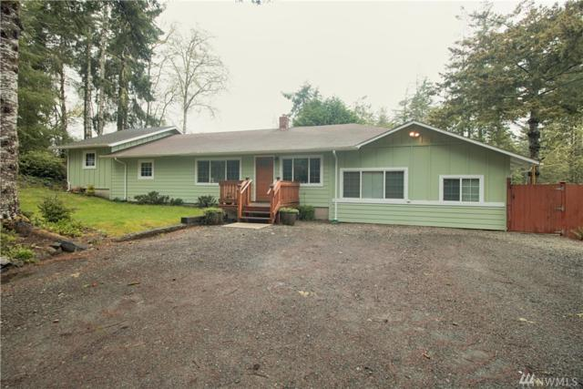 2809 230th Lane, Ocean Park, WA 98640 (#1275858) :: Homes on the Sound