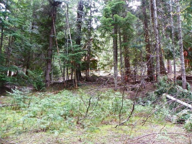 64-Lot 64 Alpine Lane, Easton, WA 98925 (#1275918) :: Homes on the Sound