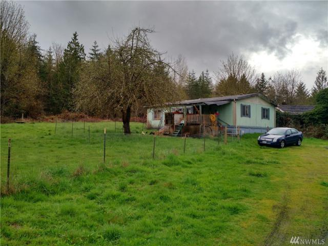 3810 Jackson Hwy, Chehalis, WA 98532 (#1275977) :: Homes on the Sound