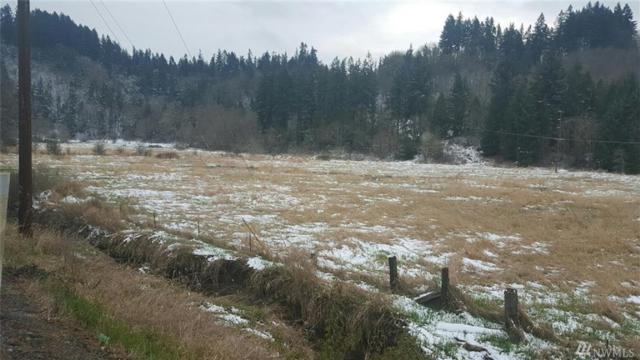 0-0 Coal Creek Rd, Chehalis, WA 98532 (#1276047) :: The Snow Group at Keller Williams Downtown Seattle