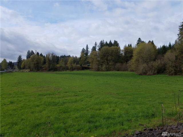 0 Westside Hwy, Castle Rock, WA 98611 (#1276158) :: The Robert Ott Group