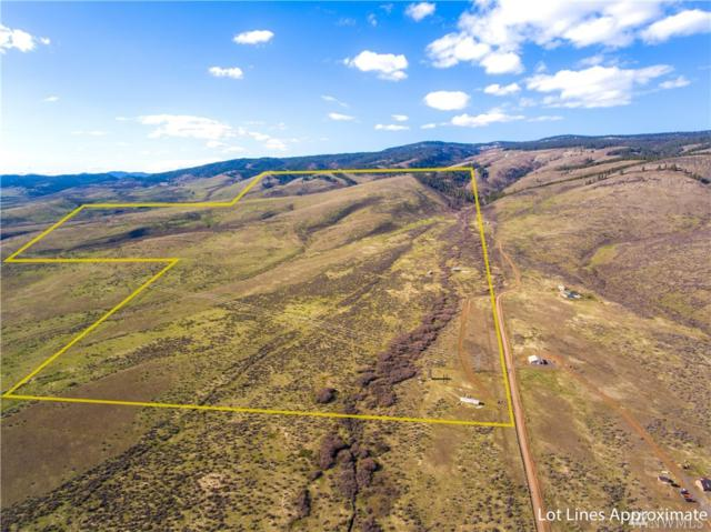463 Pheasant Lane, Ellensburg, WA 98926 (#1276226) :: Tribeca NW Real Estate