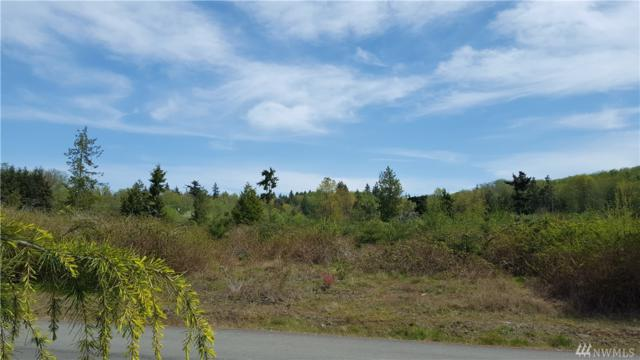 10-Acres NE Twin Spits Rd, Hansville, WA 98340 (#1276682) :: Real Estate Solutions Group