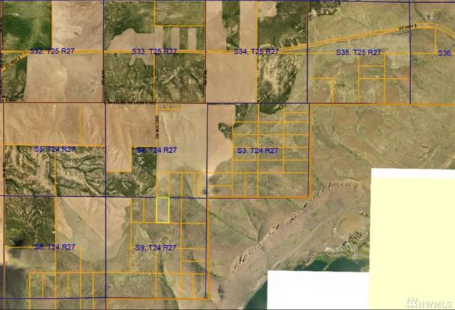 0 20 Acres Recreational Land, Coulee City, WA 99115 (#1276726) :: Northern Key Team