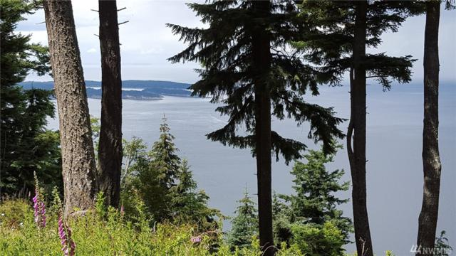 5-lots on Day Lake Road And Wright Road, Orcas Island, WA 98245 (#1276733) :: Carroll & Lions