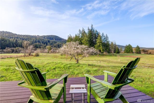 61 Sickman Ford Rd, Oakville, WA 98568 (#1276995) :: Homes on the Sound