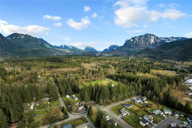 16609 415th Ave SE, Gold Bar, WA 98251 (#1277426) :: Better Homes and Gardens Real Estate McKenzie Group