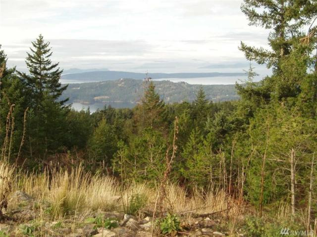 0 Buck Mt, Orcas Island, WA 98245 (#1277439) :: The Robert Ott Group