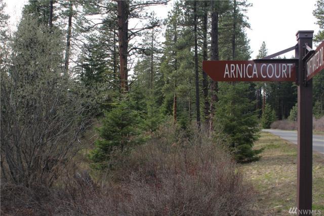 41 Arnica Ct, Cle Elum, WA 98922 (#1277517) :: Carroll & Lions