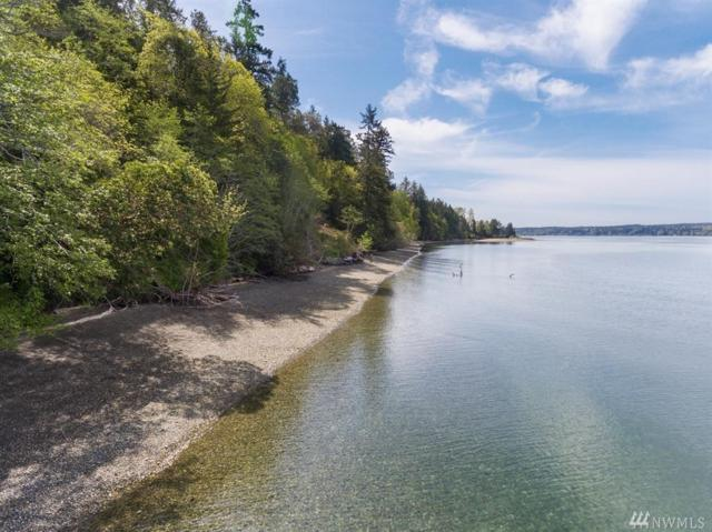 806 Russell Rd SW, Lakebay, WA 98349 (#1277957) :: Homes on the Sound