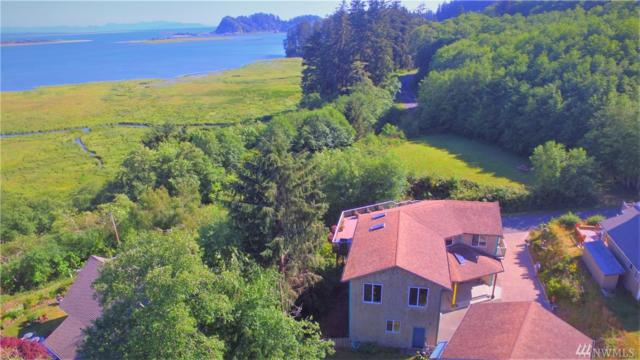 2108 Klahnee Dr, Ilwaco, WA 98624 (#1277994) :: Icon Real Estate Group