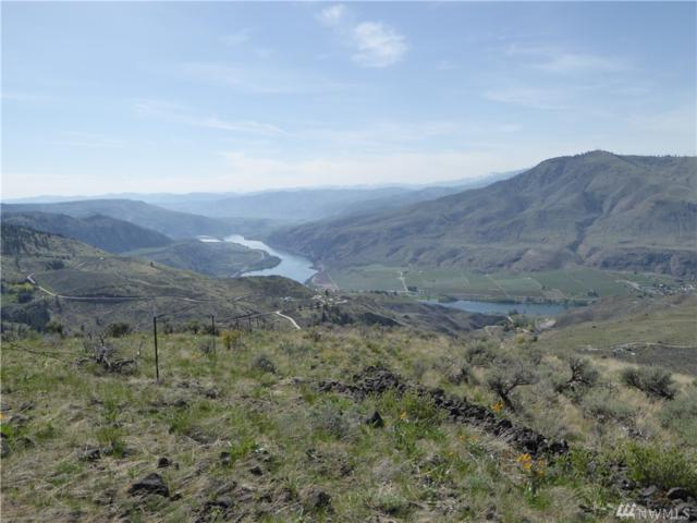 90 Chelan Hills Acreage Tracts Dr, Orondo, WA 98843 (#1278332) :: Better Homes and Gardens Real Estate McKenzie Group