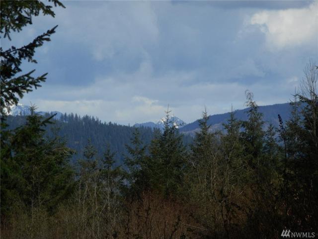 8121 Pilchuck Tree Farm Rd, Granite Falls, WA 98252 (#1278627) :: The Robert Ott Group