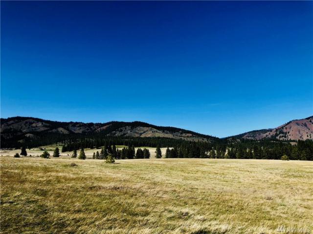 0-Lot 10B Mountain Creek Dr, Cle Elum, WA 98922 (#1278651) :: Kimberly Gartland Group
