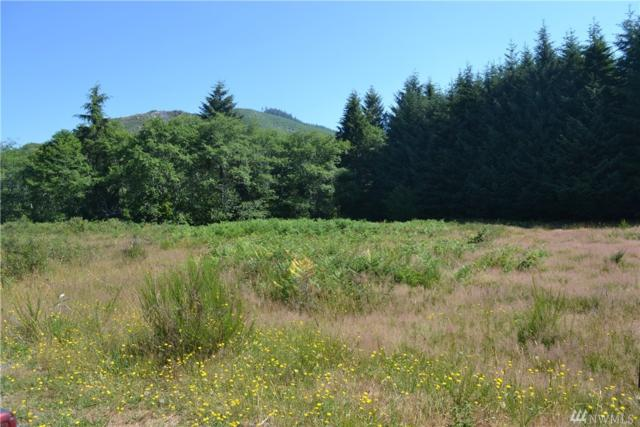 9999 Lot 1 Palmer Rd, Forks, WA 98331 (#1278674) :: Icon Real Estate Group