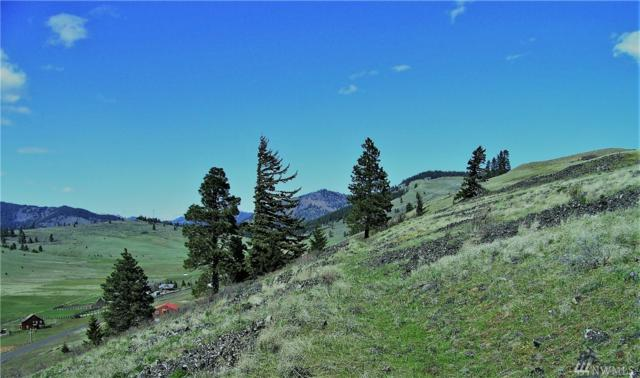 0 Lot 8A & 9A Bettas Rd, Cle Elum, WA 98922 (#1278709) :: Canterwood Real Estate Team