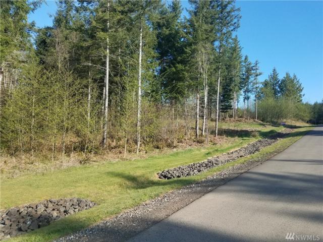 37 Blacktail Ridge Lane, Elma, WA 98541 (#1278852) :: Carroll & Lions