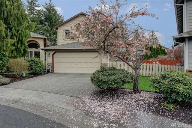 18805 20th Ave SE, Bothell, WA 98012 (#1279216) :: Windermere Real Estate/East