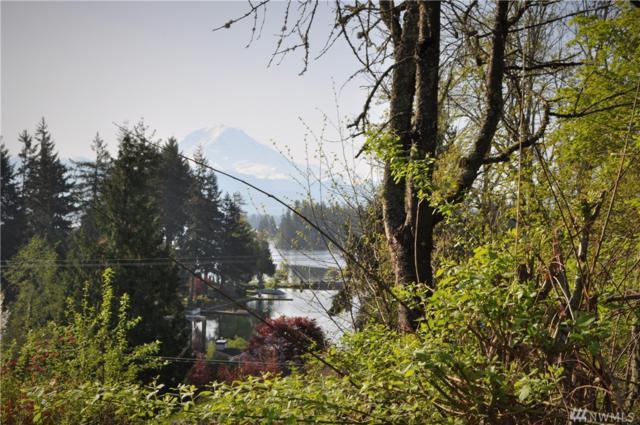 17517 Driftwood Dr E, Lake Tapps, WA 98391 (#1279314) :: Morris Real Estate Group