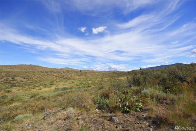 20 Hamilton Ranch Lp, Winthrop, WA 98862 (#1279553) :: Homes on the Sound