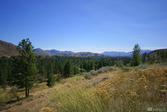 2 Williams Rd, Winthrop, WA 98862 (#1279622) :: Homes on the Sound