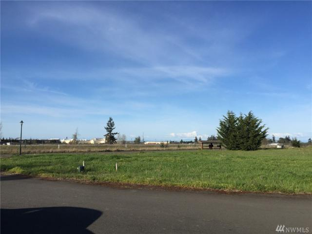 9999 Marlo Lp, Sequim, WA 98382 (#1279880) :: Homes on the Sound