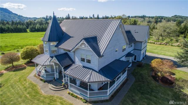 299 E Valley Rd, Skamokawa, WA 98647 (#1279887) :: Real Estate Solutions Group