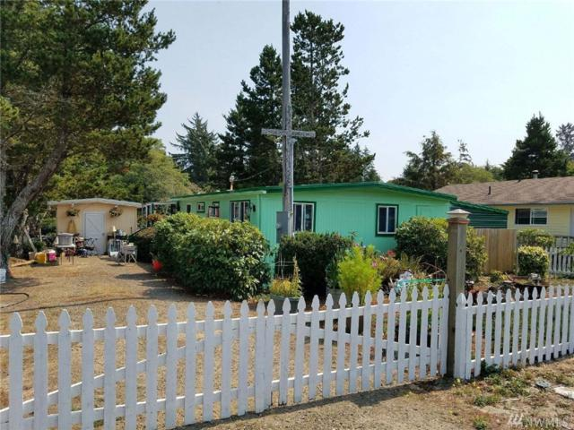 30312 W St, Ocean Park, WA 98640 (#1280000) :: Icon Real Estate Group