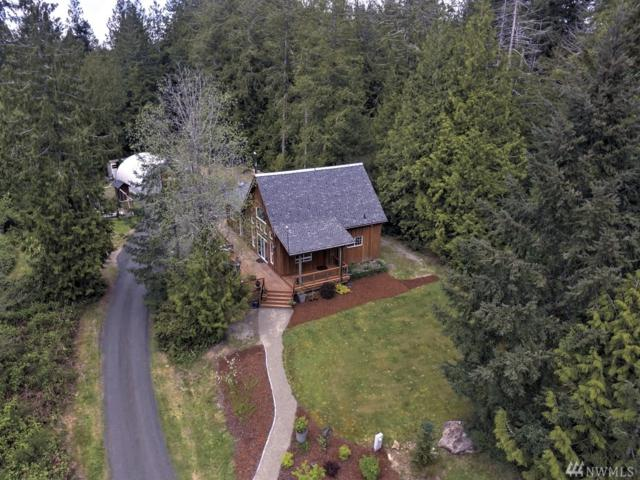 20 E Robbins Road, Grapeview, WA 98546 (#1280228) :: Homes on the Sound