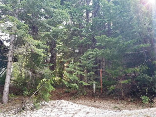 93-Lot 93 Via Kachess Rd, Easton, WA 98925 (#1280436) :: Homes on the Sound