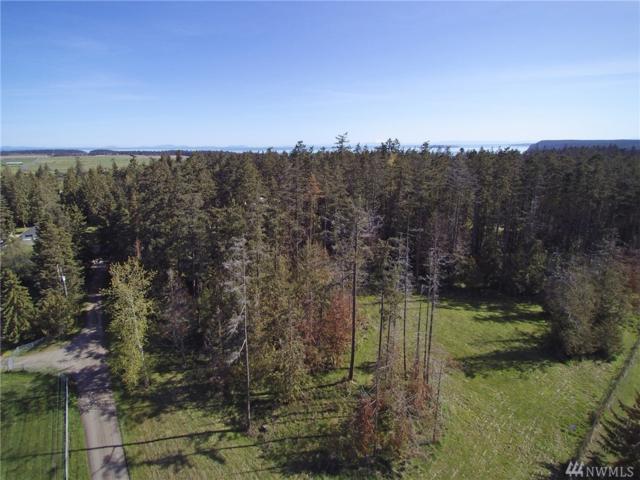 999 Big Foot Lane, Sequim, WA 98382 (#1280454) :: Morris Real Estate Group
