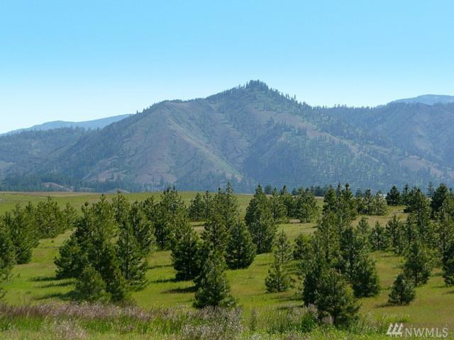 813-(Lot 2) Leo Lane, Cle Elum, WA 98922 (#1280898) :: Better Homes and Gardens Real Estate McKenzie Group