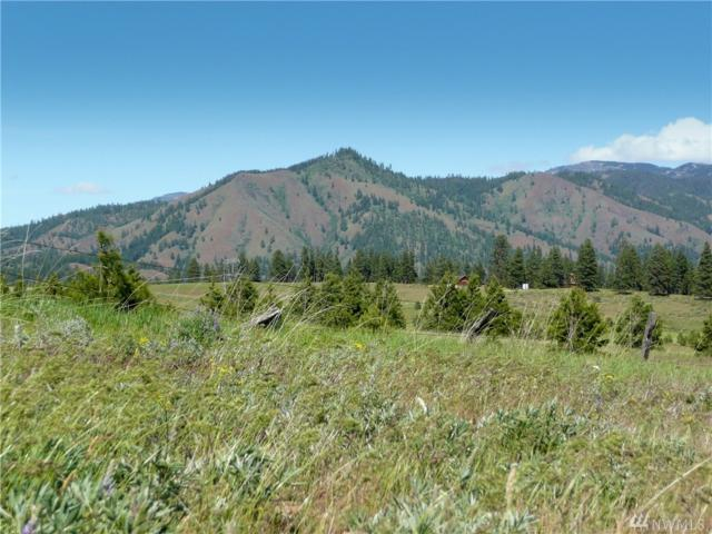 821-(Lot 12) Leo Lane, Cle Elum, WA 98922 (#1280927) :: Better Homes and Gardens Real Estate McKenzie Group