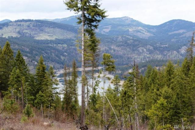 0-TBD China Creek Rd, Evans, WA 99126 (#1281030) :: Real Estate Solutions Group