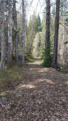 180 Kiias Elk Trail, Cle Elum, WA 98922 (#1281089) :: Morris Real Estate Group