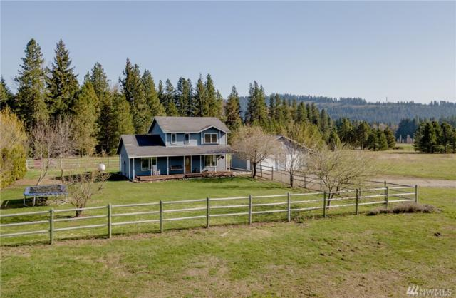 2503 Nelson Siding Rd, Cle Elum, WA 98922 (#1281605) :: Real Estate Solutions Group