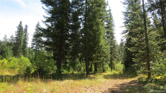 9-Lot 9 Cozy Lane, Ronald, WA 98940 (#1281649) :: Morris Real Estate Group