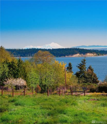 4021 Oak Bay Rd, Port Ludlow, WA 98365 (#1281876) :: Homes on the Sound