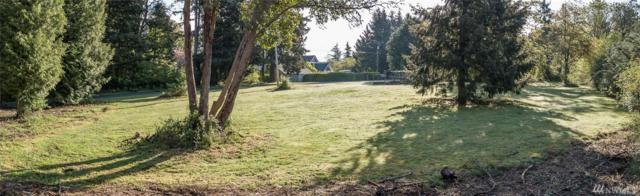 72-xxx SW Maury Park Rd, Vashon, WA 98070 (#1281960) :: Real Estate Solutions Group