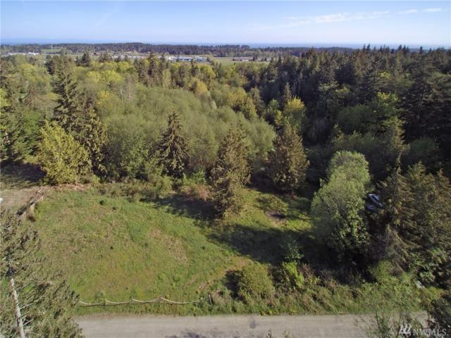 451-& 467 John Jacobs Rd, Port Angeles, WA 98362 (#1282013) :: Better Homes and Gardens Real Estate McKenzie Group