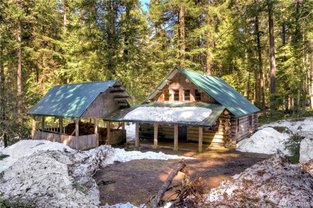 115 Silver Springs Usfs, Greenwater, WA 98022 (#1282419) :: Homes on the Sound