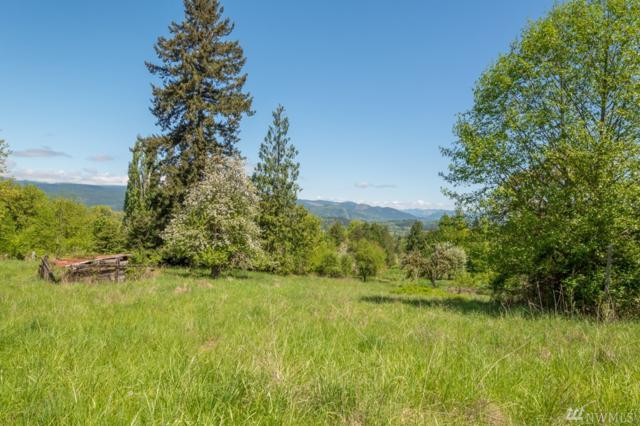 0 Bowen Rd, Mossyrock, WA 98564 (#1282692) :: Better Homes and Gardens Real Estate McKenzie Group